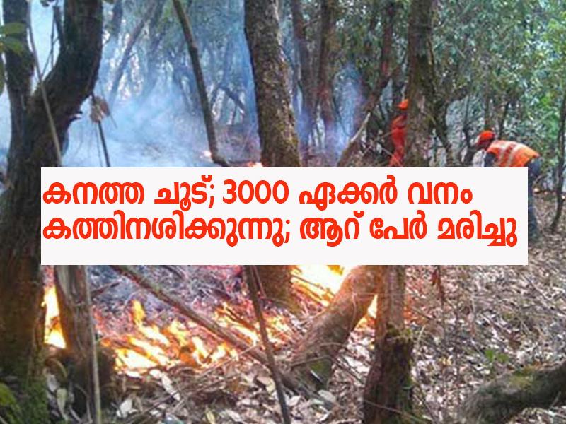 uttarakhand-forest-fires
