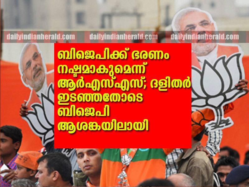 BJP-supporters-in-New-Delhi2