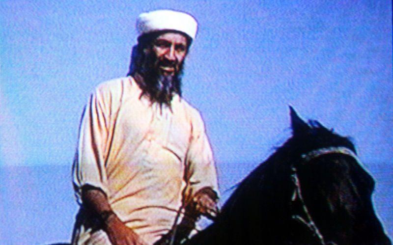 laden-horse