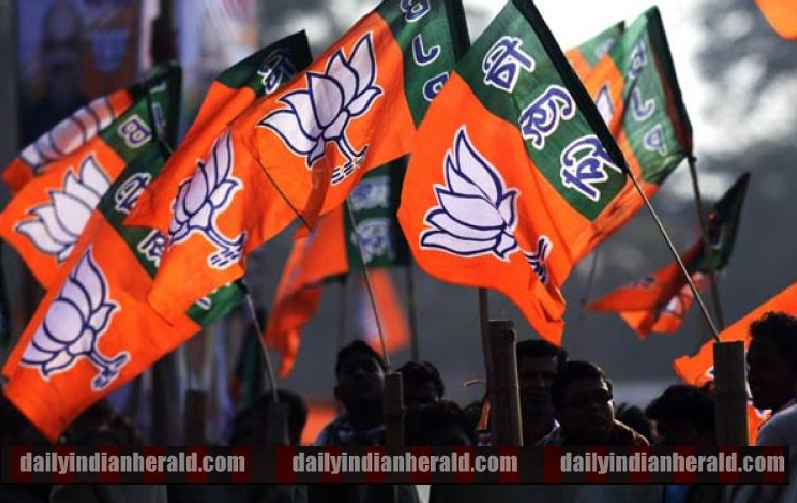 BJP FLAGS -dih